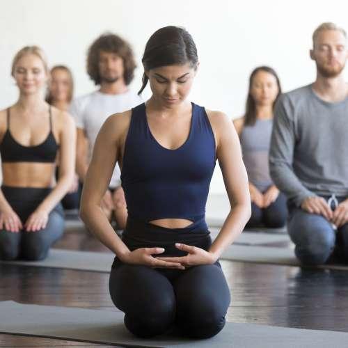 India – Positive Neuroplasticity Meditation Course